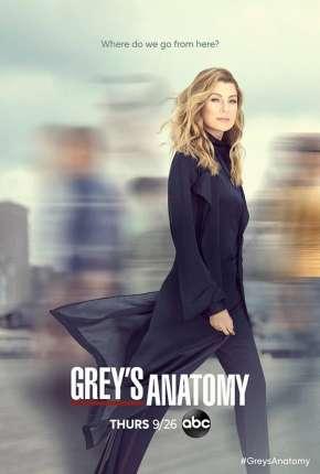 A Anatomia de Grey - 17ª Temporada Torrent Download