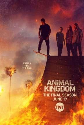 Animal Kingdom - 5ª Temporada Legendada Torrent Download
