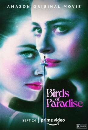 Pássaros de Liberdade Torrent Download